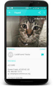 Found cat Traista app post